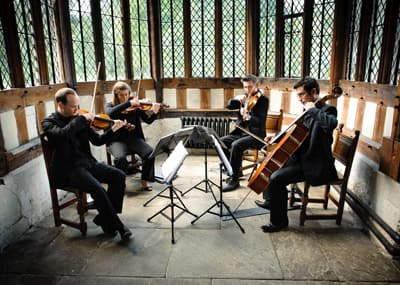 Suave String Quartet Bespoke String Quartet Hire