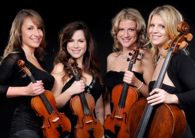 Flower Quartet Highest Quality Strings
