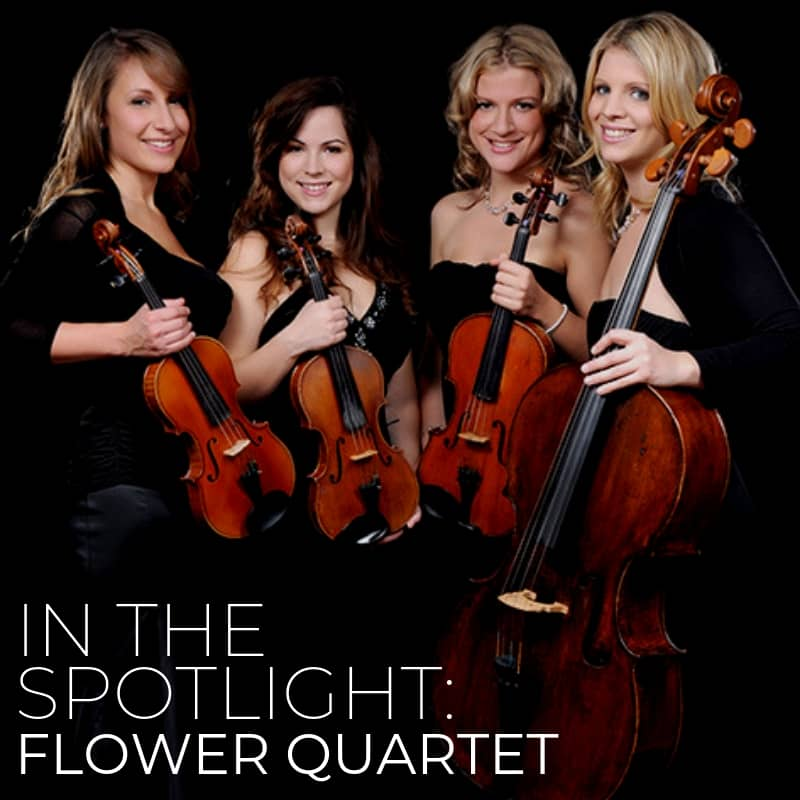 Flower Quartet In The Spotlight