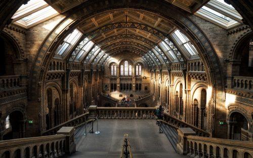 Museum Venue