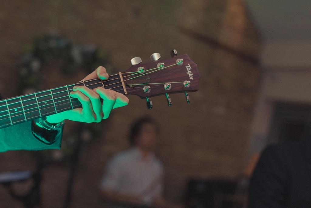 Wandering Wings Guitarist
